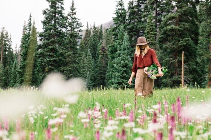 Ceriņi, bērzu lapas, ozola mizas un citi ārstniecības augi, kuri jāievāc vasaras sākumā